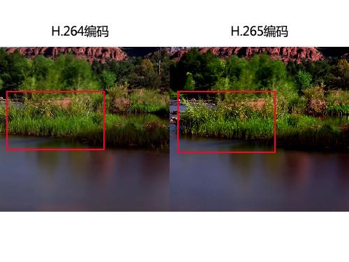4K电影能装进DVD 解析H.265编码新技术