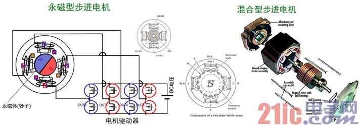 图2. 永磁型及混合型步进电机的工作原理。