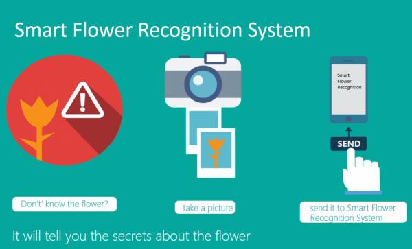 """中科院与微软合作研发""""智能花朵识别系统"""""""