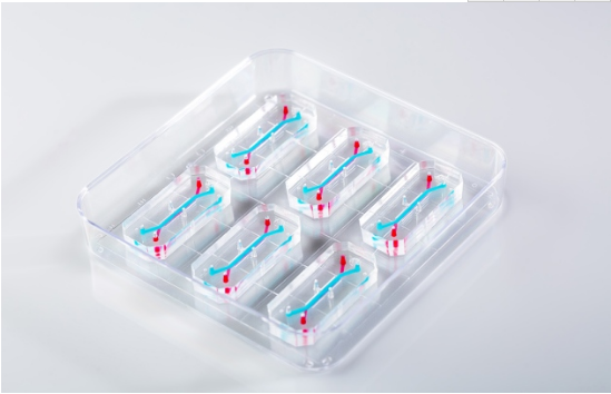 FDA人类肝脏芯片实验或将取代动物毒理学实验?