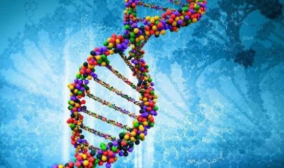 幸运儿才有的8项对人有益的基因突变,你有吗?