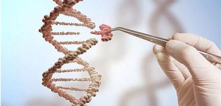 """这""""疯子""""改造了自已的DNA,""""超级人类""""将诞生吗?"""