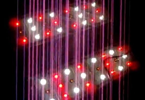 世界第一!中国科学家研发出世界上最大规模的光量子计算芯片