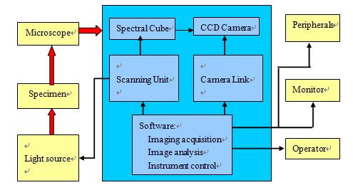基于LabVIEW的显微荧光光谱成像系统