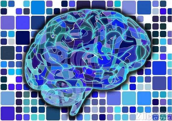 贫穷不仅限制你的想象,还影响你的大脑!导致记忆力下降