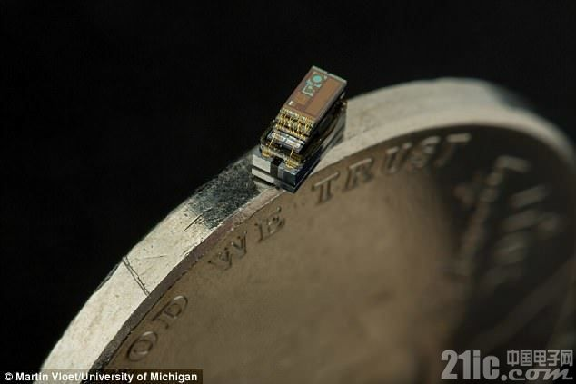 比米粒还小 世界最小计算机或可帮助研究癌症