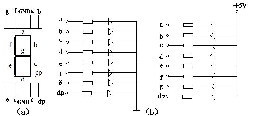 单片机学习笔记(三)――数码管显示