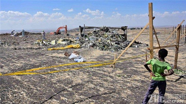 新原因?埃航遇难波音737 MAX或遭鸟撞击导致攻角传感器失效