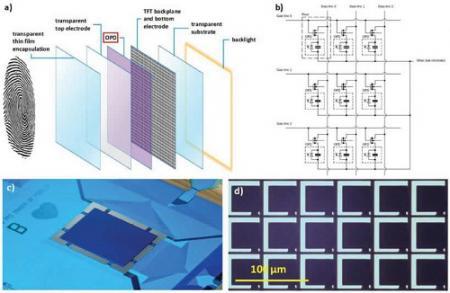 国外科学家研制出隐形高分辨率指纹传感器