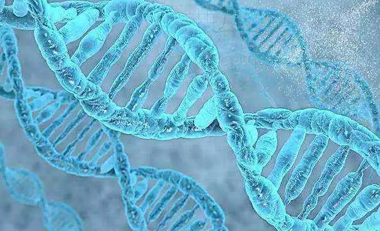 DNA相�H、AI配�Γ��圻���刻骨�心、令人�y忘��