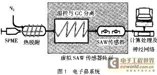 表面涂覆聚异丁稀薄膜差动结构的SAW传感器对分离后的有机气体成分进行定量检测