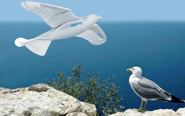 有一只机器鸟SmartBird,它能自己飞,所以很鸟