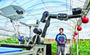 盘点农用智能机器人:机器人锄草效率增60倍