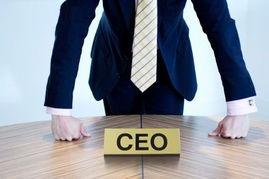 距离CEO 你只差了这些!