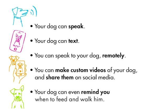 带着狗狗去泡妞 Petspeak让狗狗说话的神器