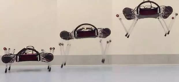 魔性!身形敏捷弹跳俱佳的机器人
