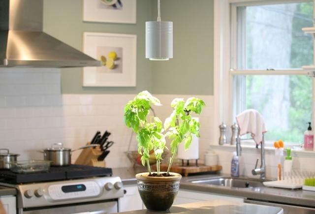 智能LED灯:专为室内植物提供光合作用