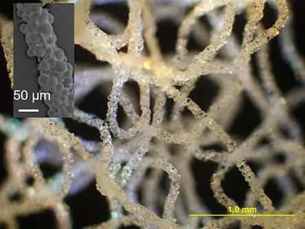 科学家研发用于生物医学和软机器人的3D打印硅橡胶结构