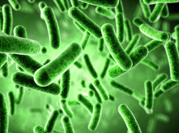 可怕的超级病毒!太空环境下细菌进行致命变异