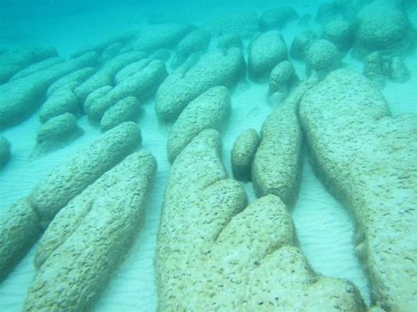 科学家复活远古酶,探寻地球最古老生命的生活环境