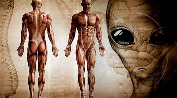 诡异学说:人类其实来自另一个星球!