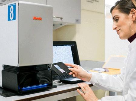 AI显微镜问世,数清血液中疟疾细菌的数量不在话下