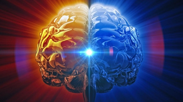操控记忆?科学家剖开大脑深入研究记忆过程