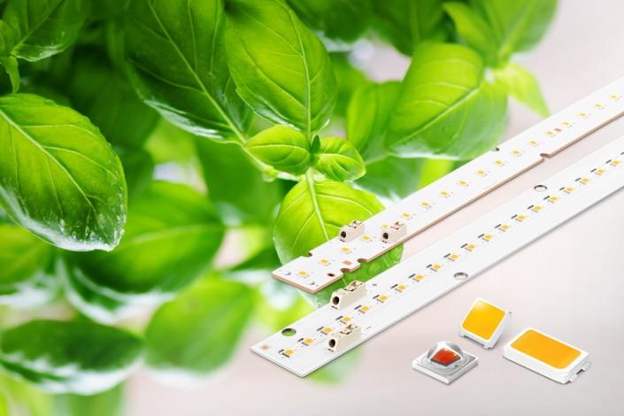 推出新型LED封装产品 三星进军园艺LED元件市场
